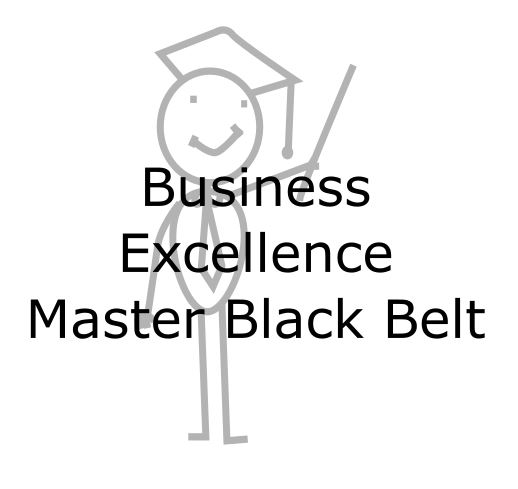 Business Excellence Master Black Belt