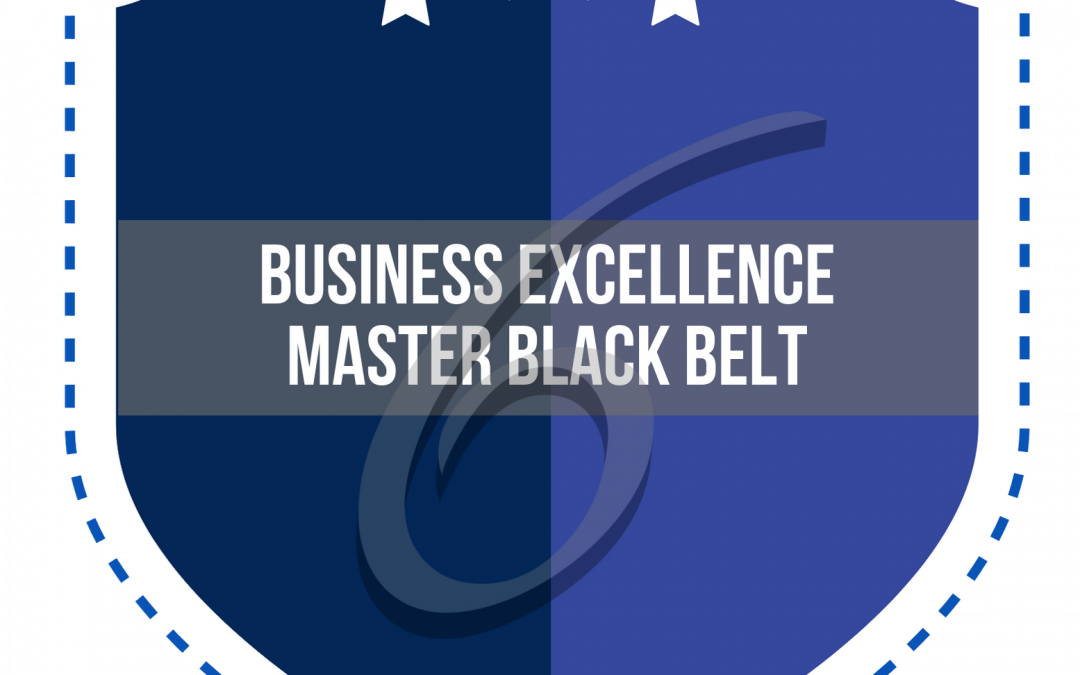 Business Excellence Master Black Belt