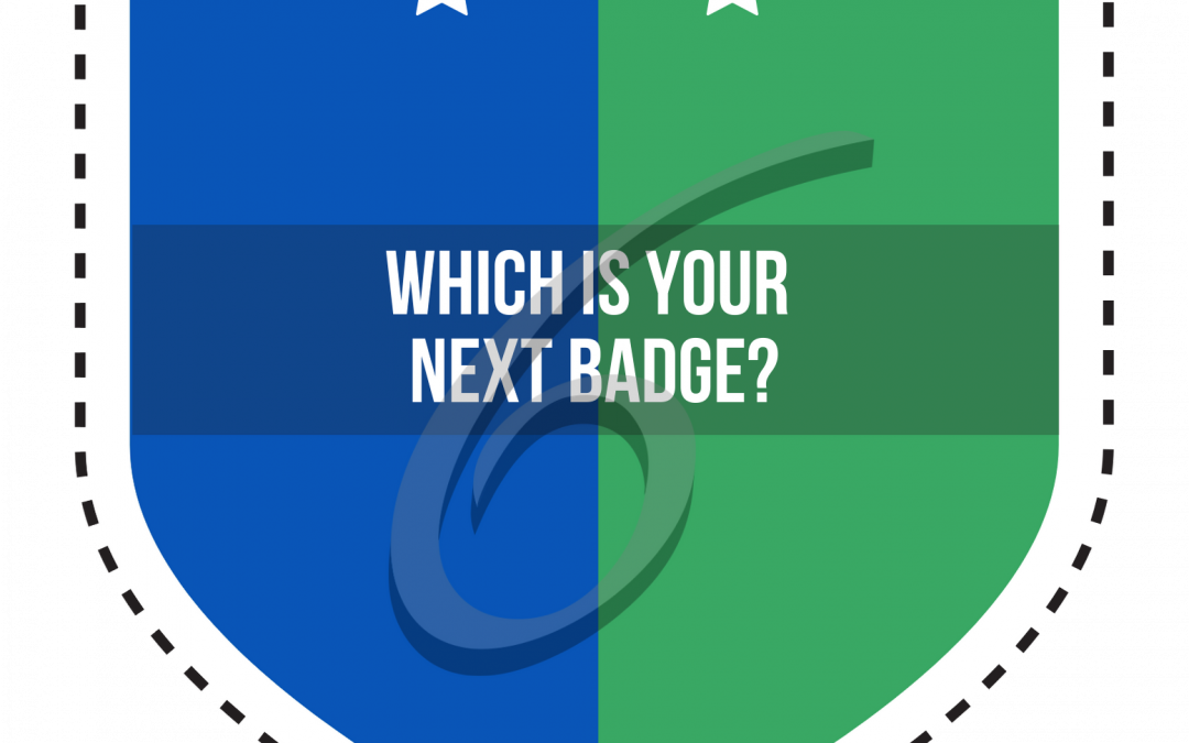 Which is your next badge?